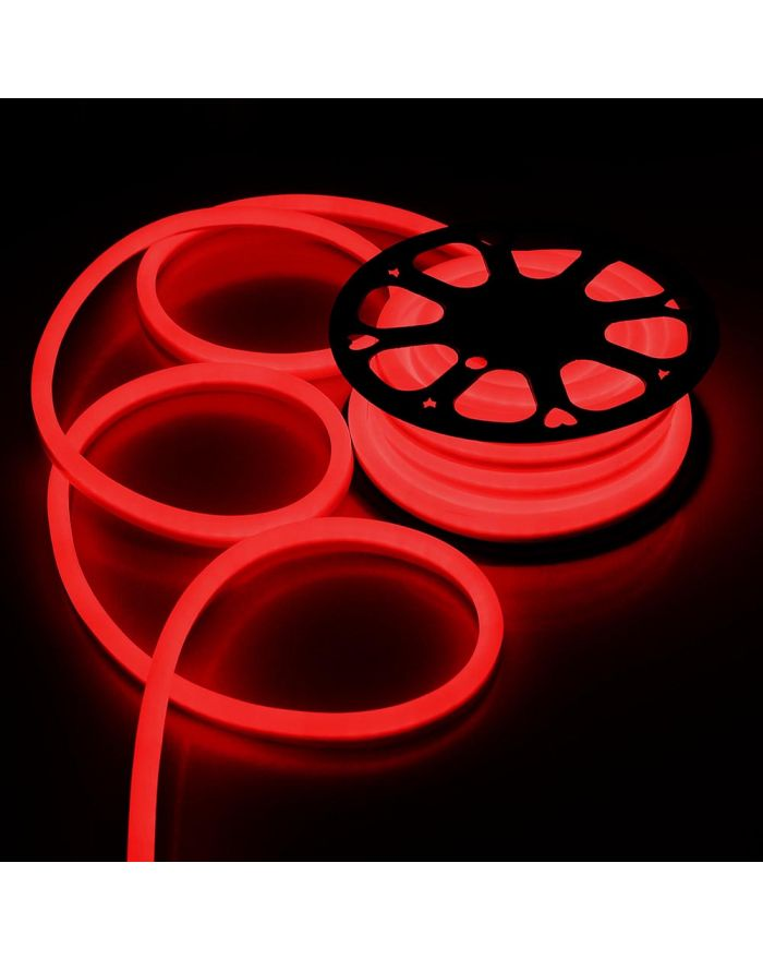 DC12V Red Neon LED Rope Light Waterproof SMD2835 120 LEDS Neon Flex