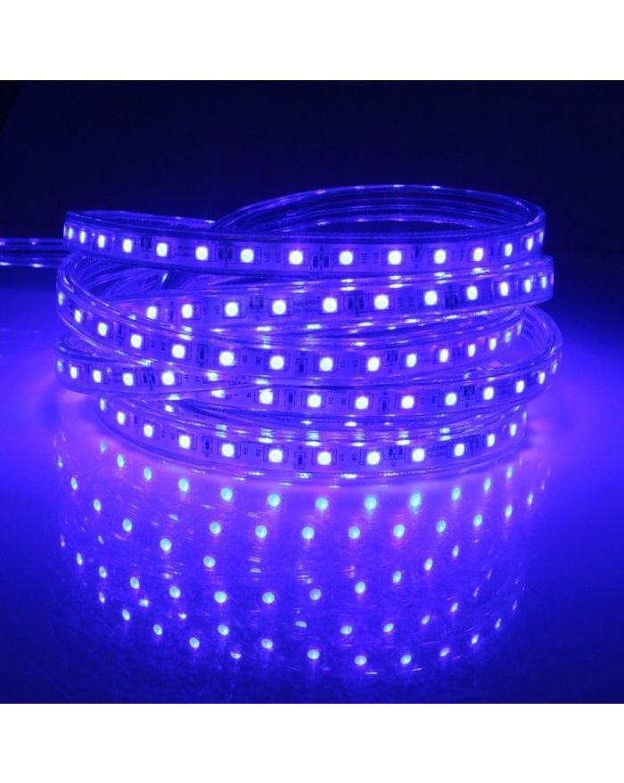 Blue High Output SMD5050 Waterproof Flat LED Strip Light
